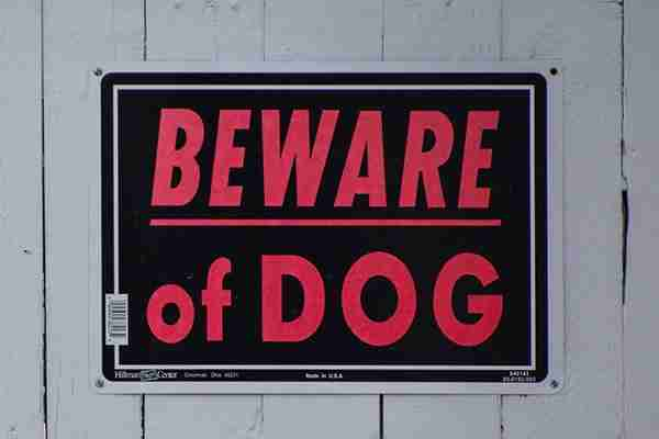 nassau-county-personal-injury-lawyer-beware-of-dog-sign-on-gray-fence